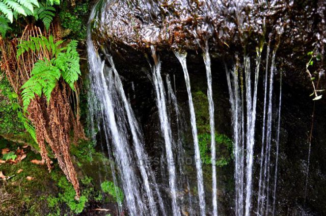 Vodopád pod Širokým kopcem