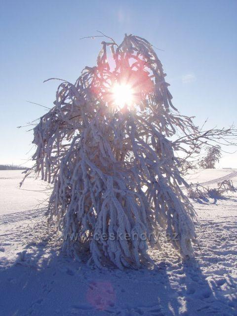 zimní lampa na Slavném