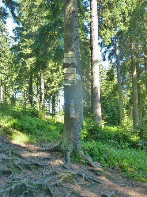Turistický rozcestník Černík spojuje trasy  po žluté a modré TZ ke Švýcýrně