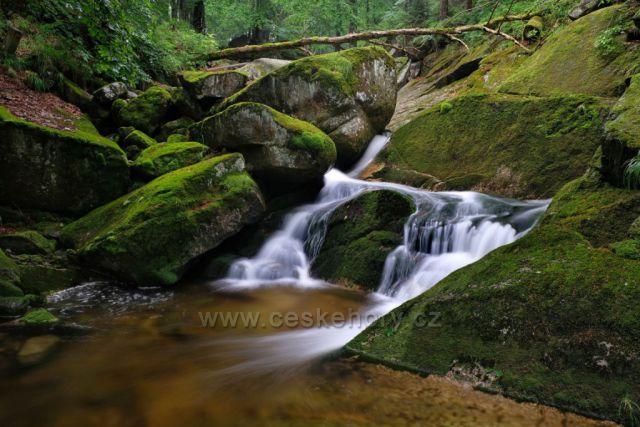 Zelené deštivé Jizerky