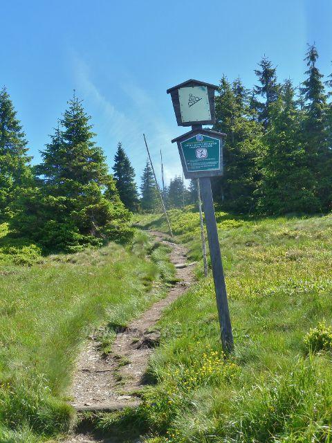 Poslední metry sestupové cesty ke Švýcárně