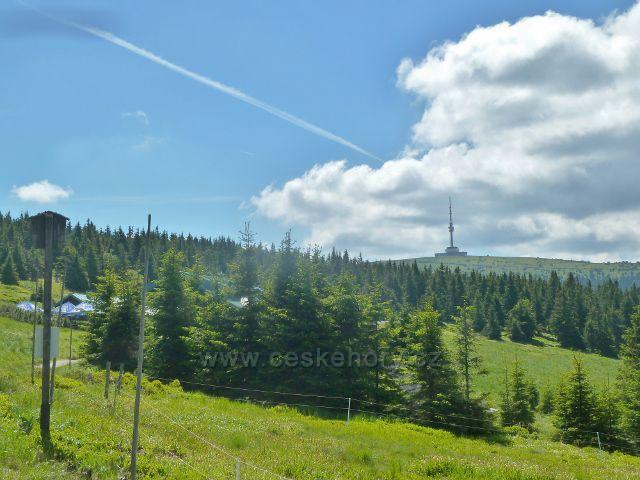 Pohled k Pradědu z cesty od Švýcárny po červené TU k rozcestí Slatě