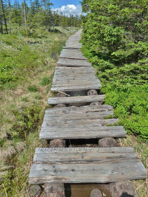 Poničený dřevěný chodník na červené TZ mezi rozcestím Slatě a Malým Jezerníkem