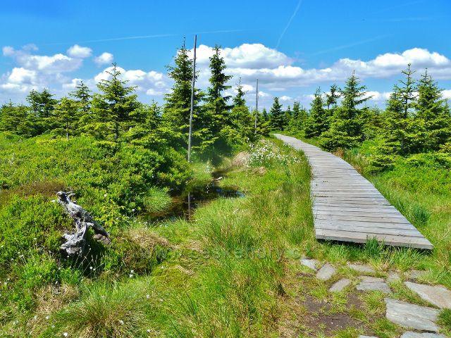 Dřevěný chodník přes Malý Jezerník
