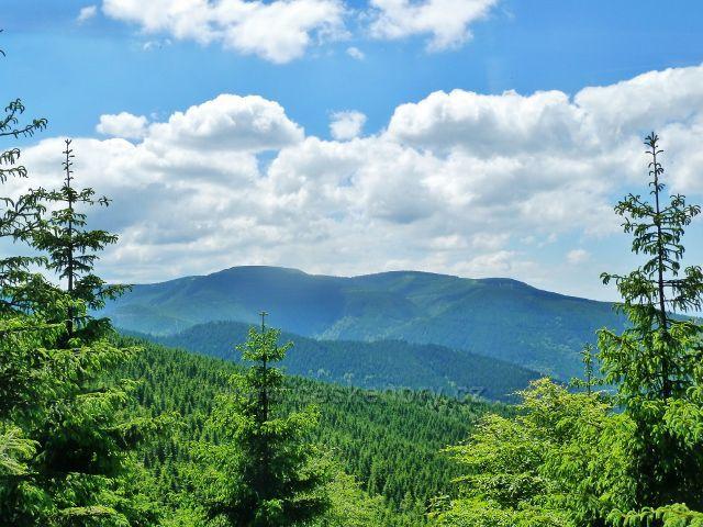 Pohled na Mravenečník, Tupý vrch a Medvědí horu.Vpředu vykukuje hřeben Hřbetů