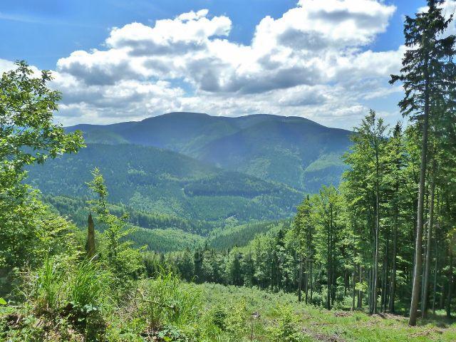 Pohled na Mravenečník, Tupý vrch a Medvědí horu.V popředí klesající hřeben Hřbetů