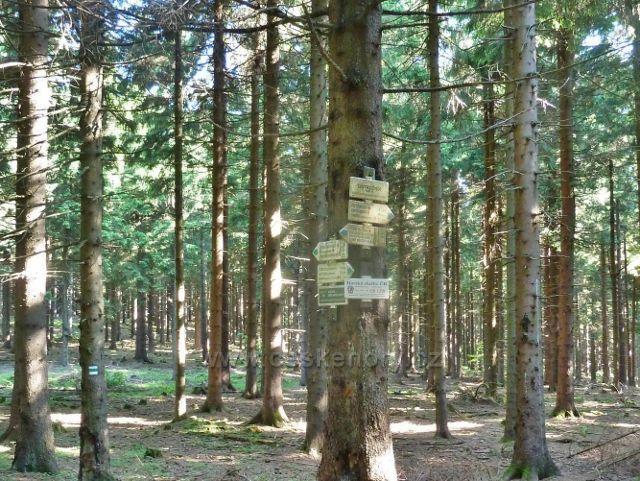 Ostružná - turistický rozcestník Ostružník ( 926 m.n.m.)