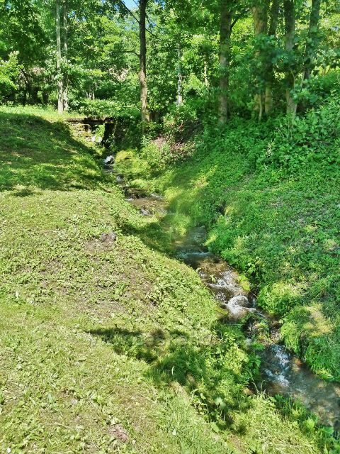 Velké Vrbno -Vrbenský potok v horní části obce