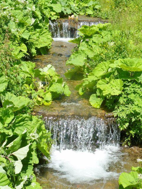 Velké Vrbno  - Vrbenský potok