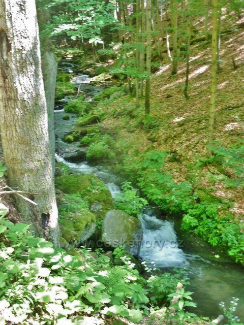 Velké Vrbno - Vrbenský potok pod Velkým Vrbnem