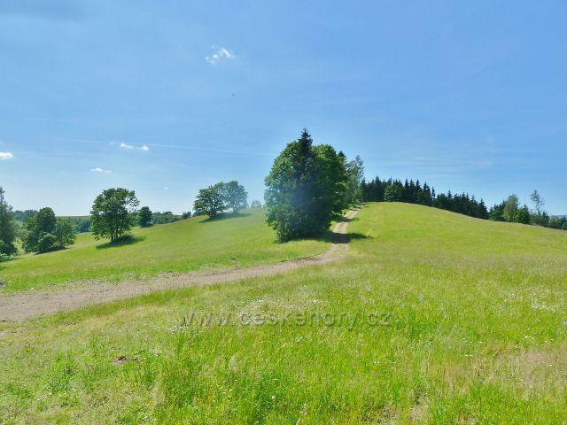 Ostružná - pohled z rozcestí U Líp na cestu po  červené TZ k Holému vrchu(850 m.n.m.) a ke Kronfelzovu