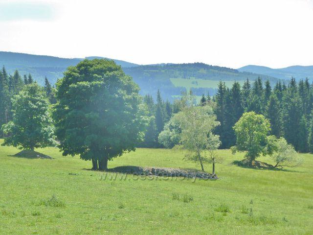 Ostružná - pastviny pod bývalou Bídou