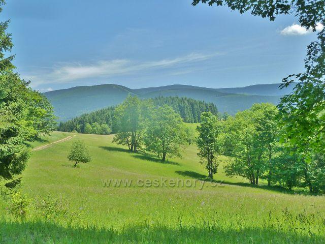 Ostružná - pastviny Pod Stráží, na obzoru Šerák