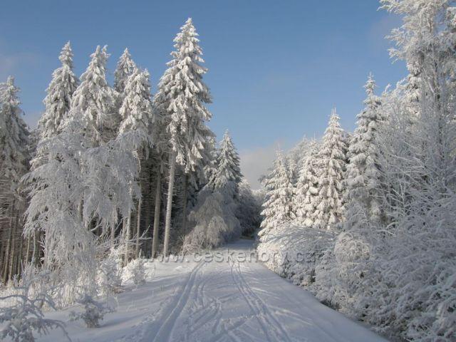 zimní pohádka,pod Vrchmezím-Orlické hory