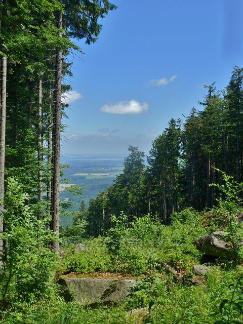 Vápenná - pohled z úbočí Jasanového vrchu k Velkému rybníku u Černé Vody