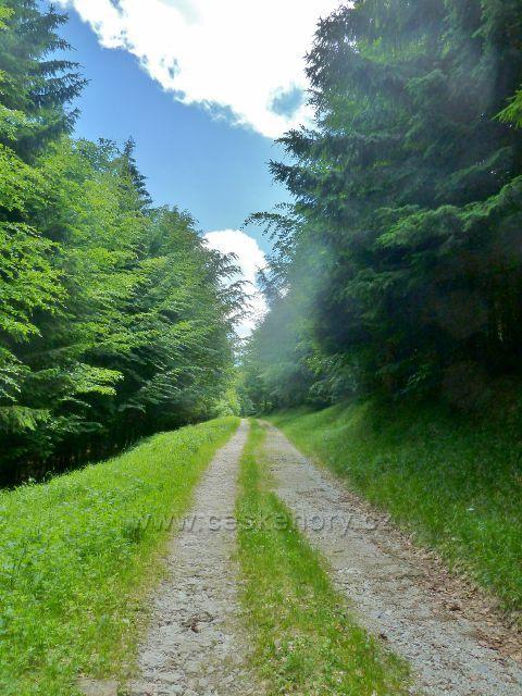Vápenná - vrstevnicová cesta po úbočí vrchu Na Radosti