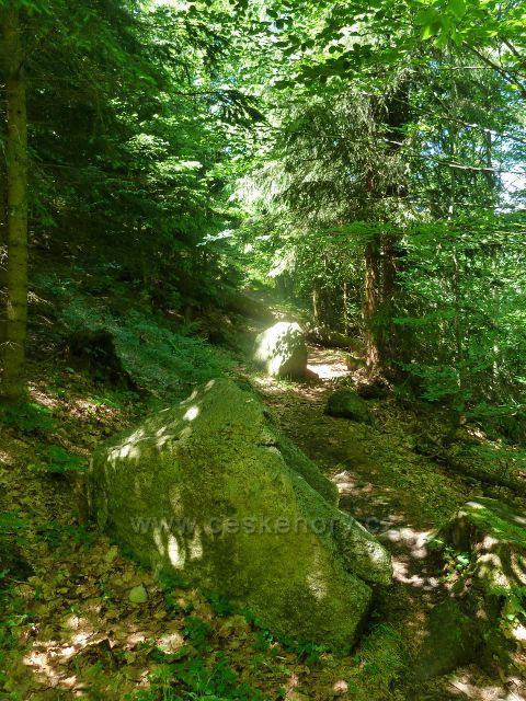 Lázně Jeseník - stezka k Mecklenburgskému pramenu po úbočí Studničního vrchu