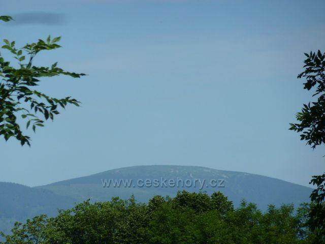 Nové Losiny - pohled na vrchol Králického sněžníku