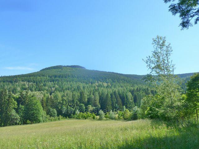 Nové Losiny - pohled na vrch Černá stráň (1237 m.n.m.)