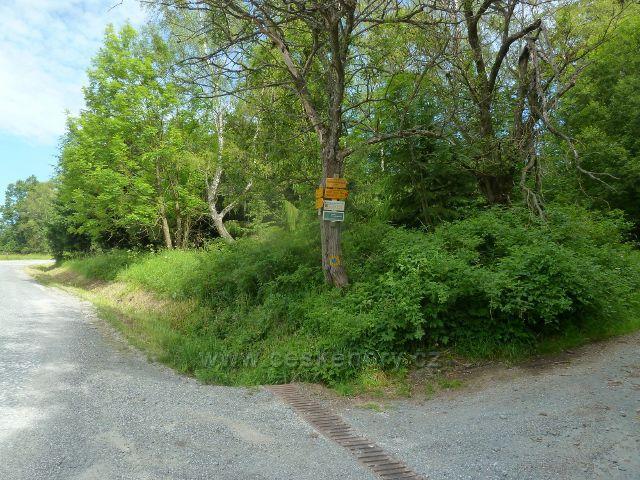 Loučná - rozcestí pod Přemyslovským sedlem, vpravo odbočuje cyklostezka do Koutů nad Desnou