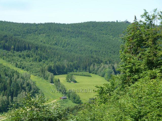 Loučná - pohled z cyklostezky 6155 do údolí Přemyslovského potoku