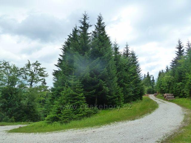 Horní Lipová - křižovatka neznačené cesty s cyklostezkou 6208 pod Lučním vrchem