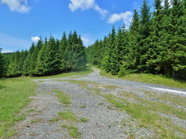 Horní Lipová - křižovatka cyklostezek na rozcestí Luční vrch