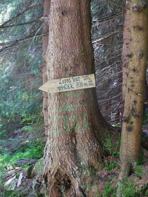 Horní Lipová - směrovka do Mrtvého údolí, jímž vede prudká,kamenitá stezka k Dolnímu lesnímu baru