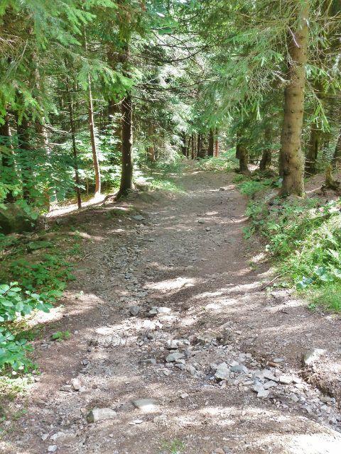 Horní Lipová - začátek stezky Mrtvým údolím k Dolnímu lesnímu baru