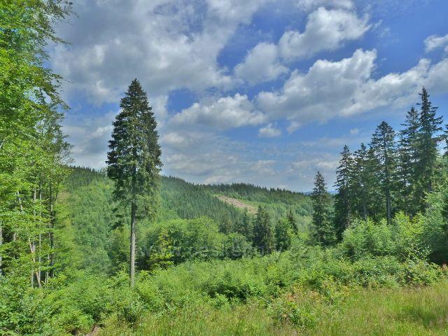 Horní Lipová - výhled z cyklostezky 6044 na hřeben Lučního vrchu