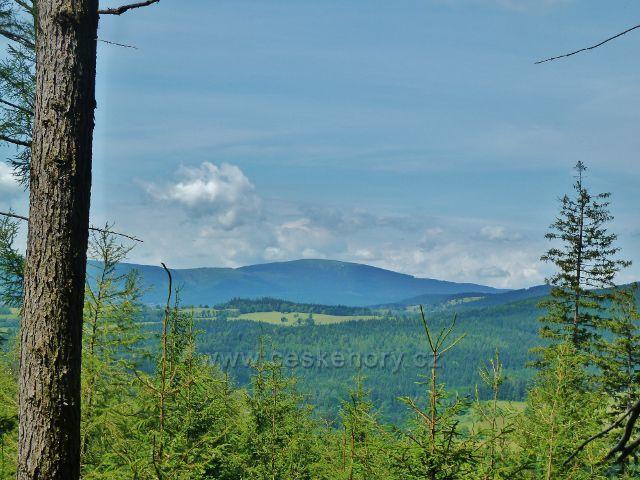 Ramzová - pohled z cesty po modré TZ k Banjaluce na vrchol Králického sněžníku