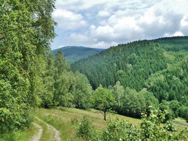 Branná - pohled z neznačené cesty do Branné k Šeráku