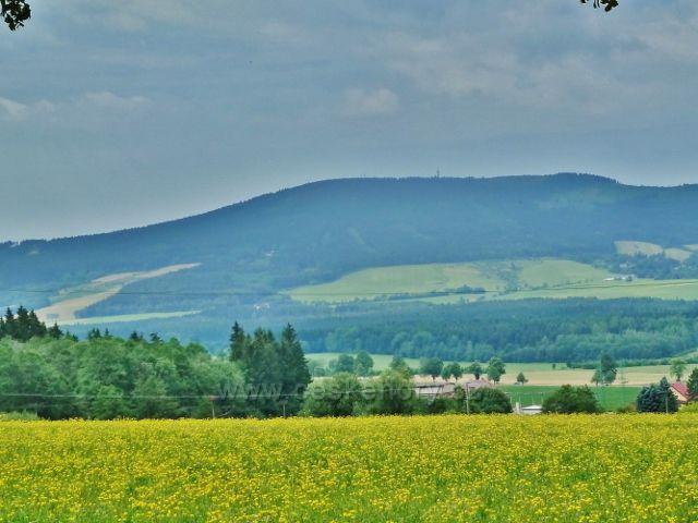Králíky - pohled z úpatí Mariánského kopce k Suchému vrchu