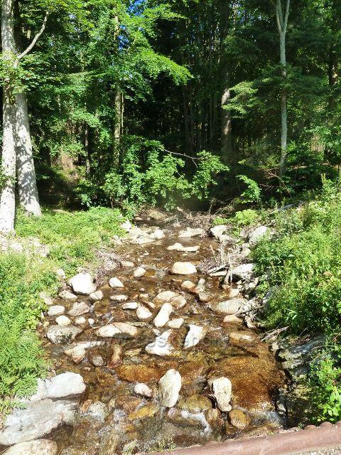 Chrastice - Prudký potok u rozcestí Bystřiny