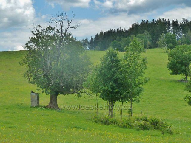 Staré město p.Sněžníkem - torzo výklenkové kapličky na úbočí Kozího vrchu nad Štěpánovem