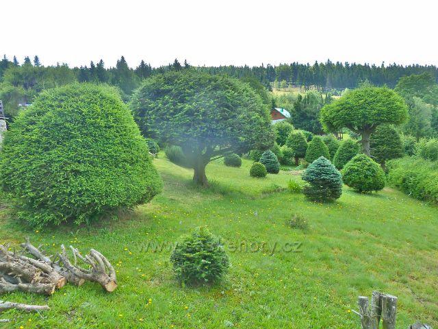 Čenkovice - jedna z mnoha zahrad v chatové oblasti