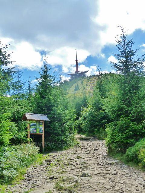 Lysá hora - pohled z cesty po žluté a modré TZ nad Malchorem k Lysé hoře