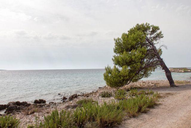 Pažský záliv