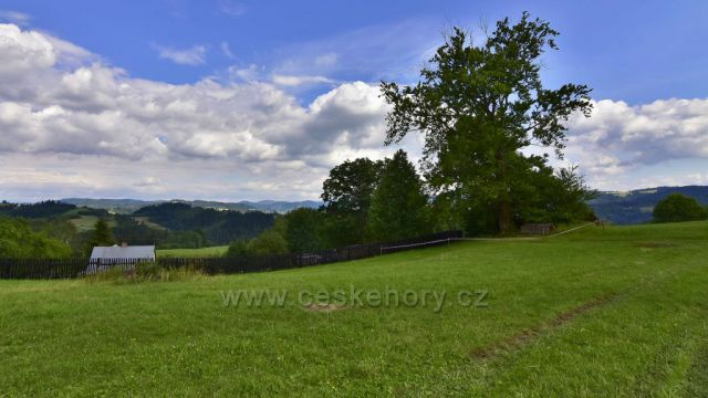 Beskydy, pohled z obce Hrčava na Slovensko.
