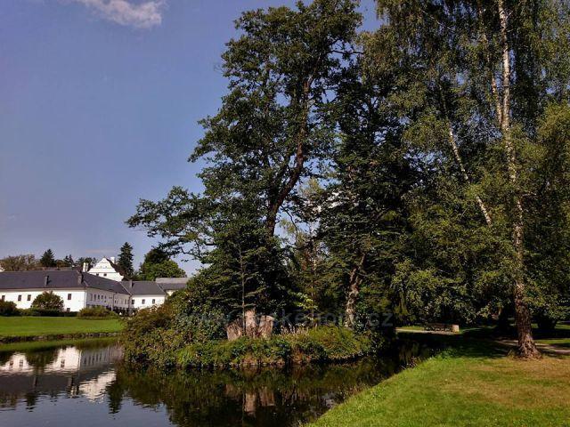 Velké Losiny - U Rybníka Zámeckého Parku