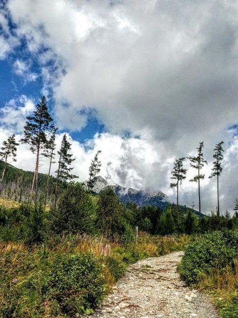 Cesta na Hrebienok.