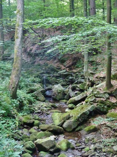 Kamenité řečiště Suchého potoku