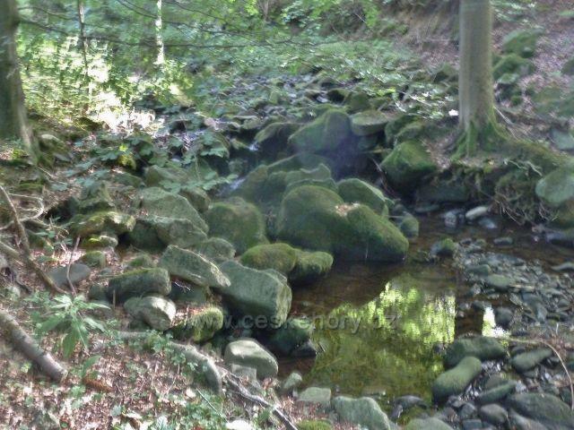 Suchý potok podél solničky na Butořanku