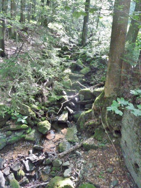 Suchý potok nad mostkem,po němž odbočuje cesta po modré TZ na Butořanku