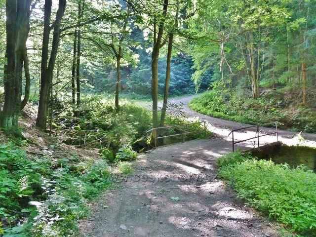 Trasa po modré TZ k Butořance odbočuje po mostku přes Suchý potok od hlavní silničky