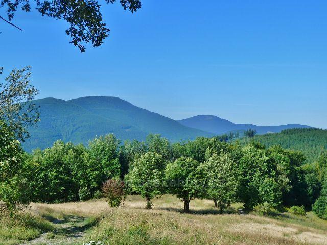 Butořanka - pohled na protilehlý masiv Smrku