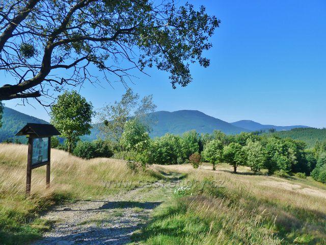 Butořanka - pohled na neznačenou cestu středem enklávy