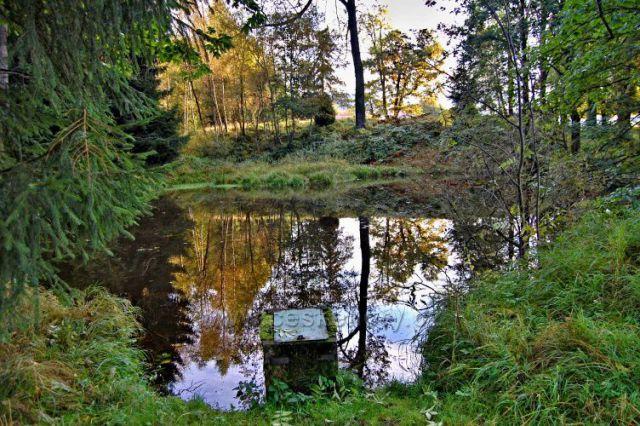 Hutní rybník