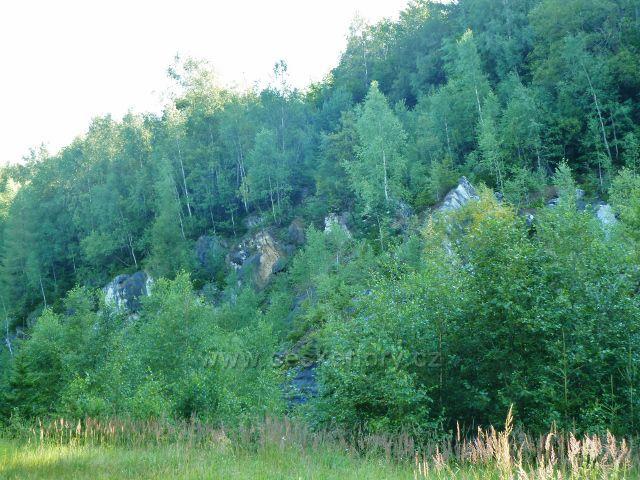 Dolní Morava - bývalý kamenolom sněžníkovského mramoru