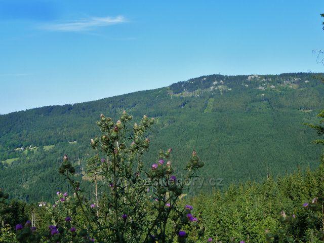 Dolní Morava - pohled na protilehlý vrch Klepáč (1144 m.n.m.) se stejnojmennou rozhlednou